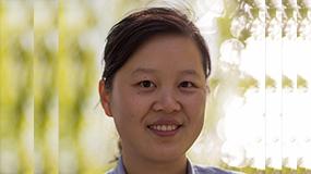 Professor Jianying Gu